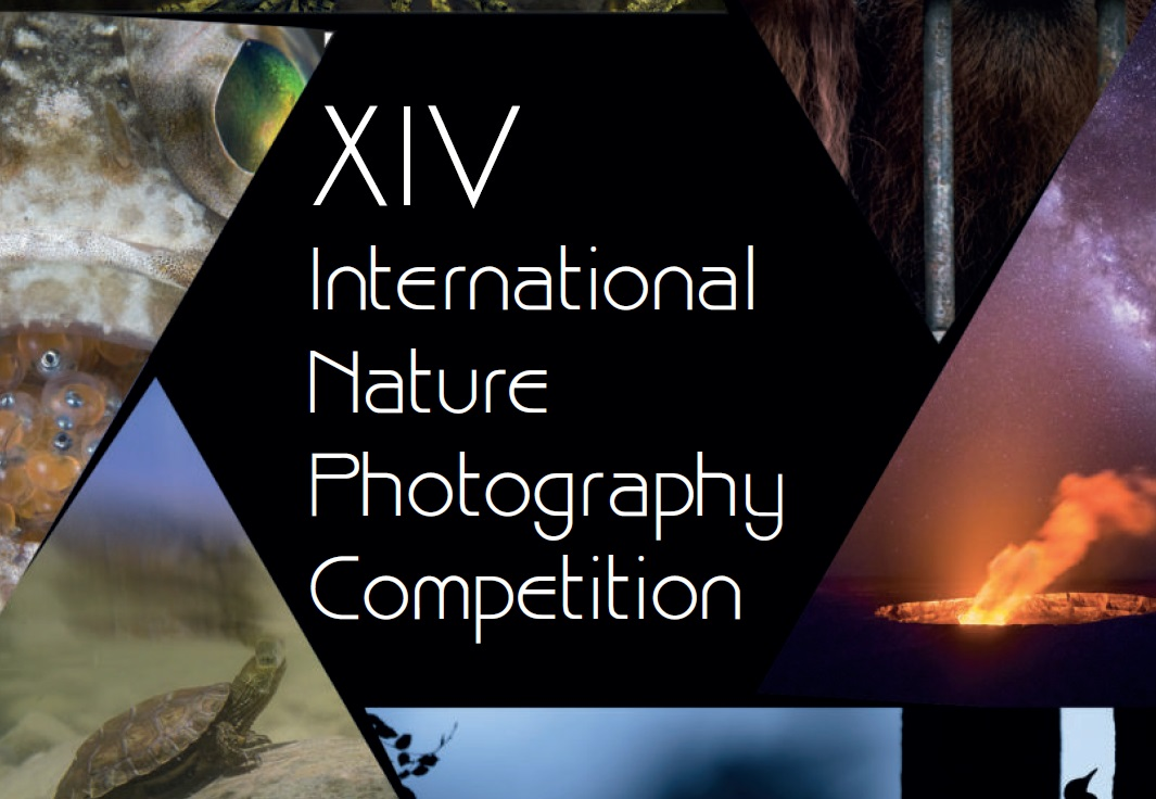 Fotowettbewerb Asferico