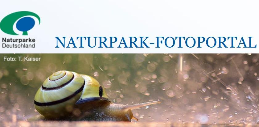 Fotowettbewerb Augenblick Natur