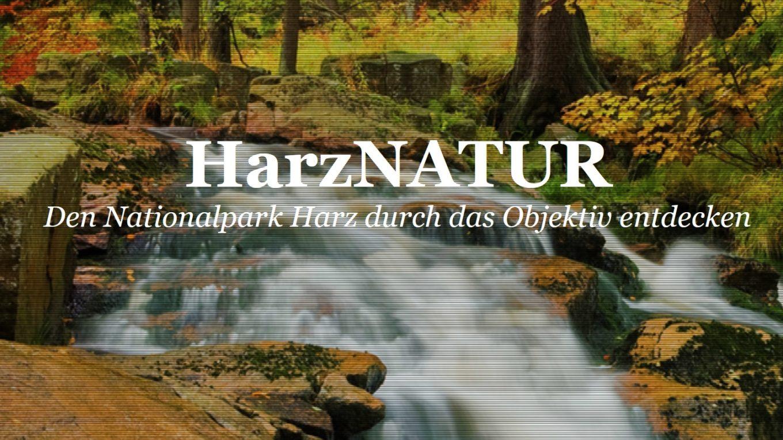 HarzNATUR