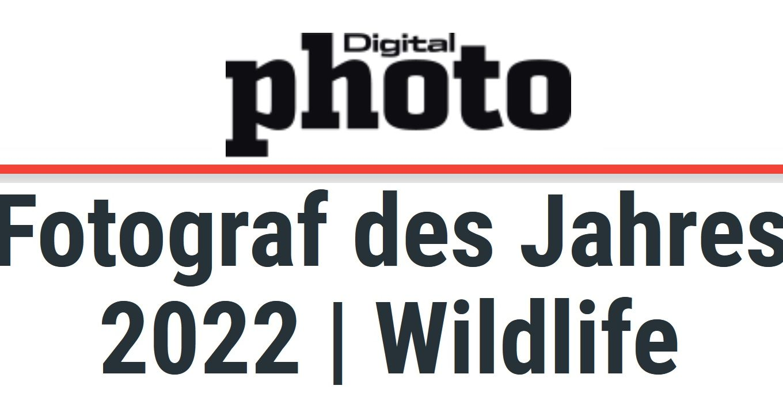 digitalphoto-fotograf-des-jahres-wildlife-2021