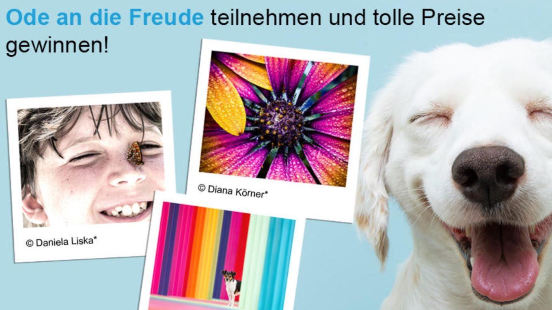 datacolor-fotowettbewerb-ode-an-die-freude-2021